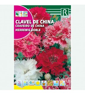CLAVEL DE CHINA HEDDEWIG DOBLE VARIADO - SOBRE DE SEMILLAS 4G