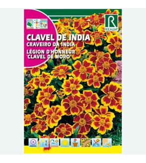CLAVEL DE INDIA CLAVEL DE MORO SIMPLE ENANO - SOBRE DE SEMILLAS 4G