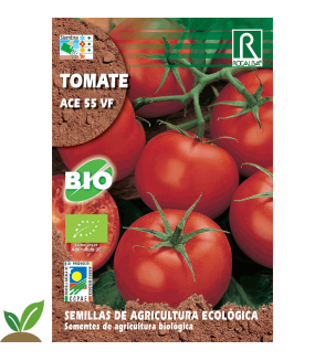 TOMATE ACE 55 VF ECO