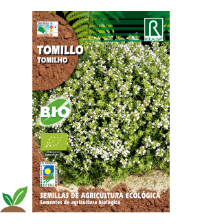 TOMILLO ECO